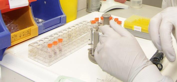testing samples